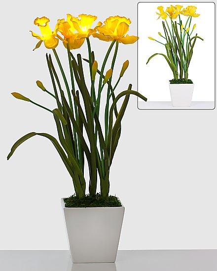 led narzissen bouquet keramik topf leuchtende blumen. Black Bedroom Furniture Sets. Home Design Ideas