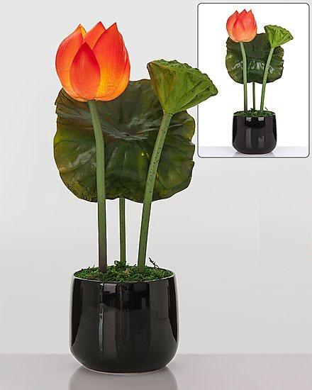 led lotusbl ten im keramik topf leuchtende blumen aparte. Black Bedroom Furniture Sets. Home Design Ideas